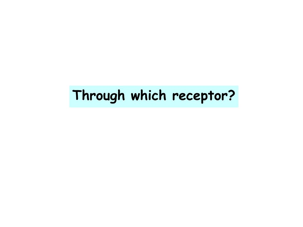 Through which receptor?