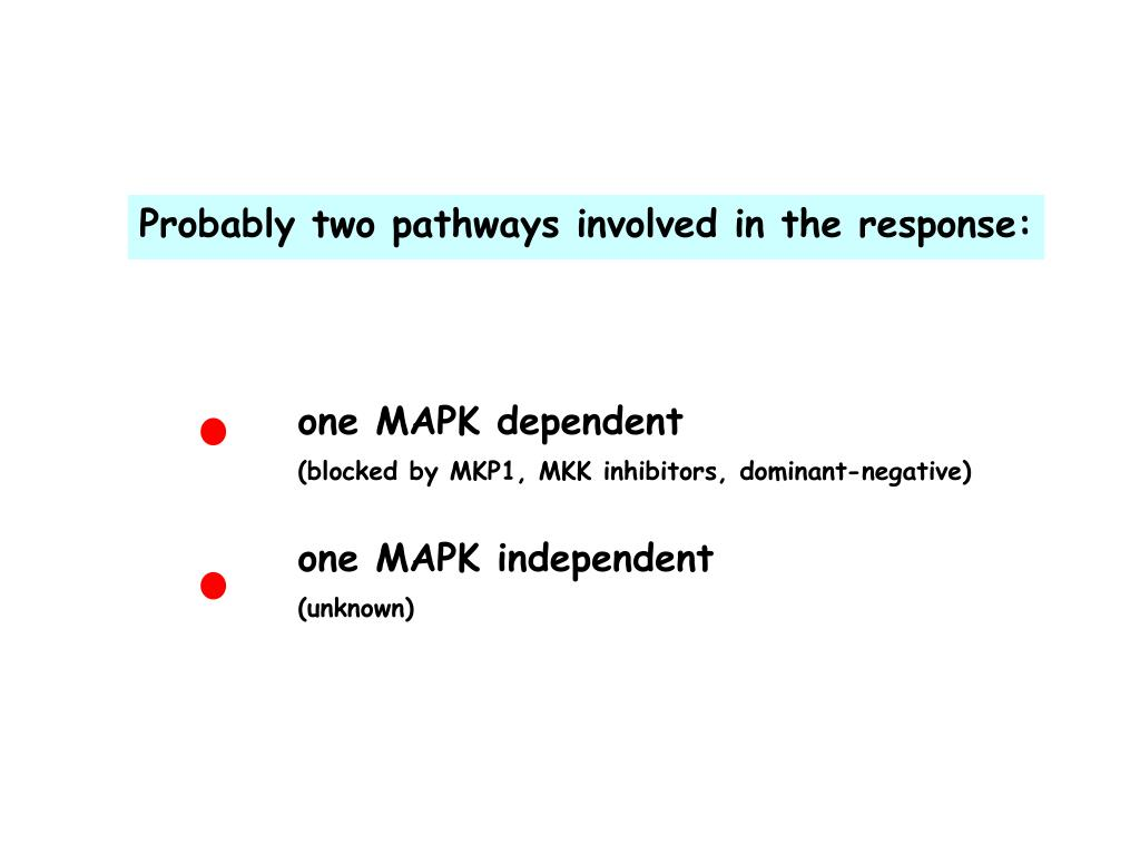 Probably two pathways involved in the response: