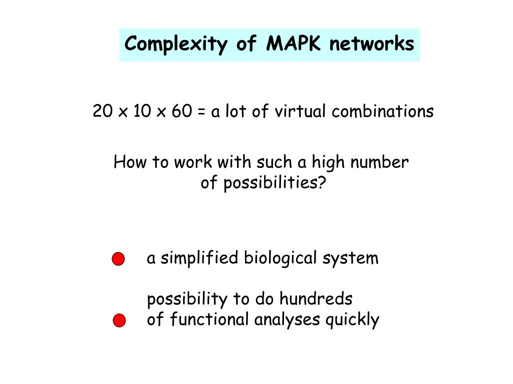 Complexity of MAPK networks