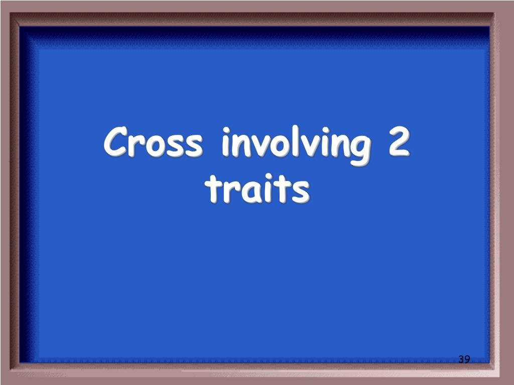 Cross involving 2 traits