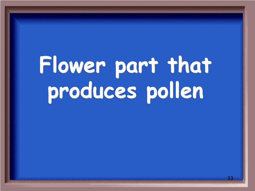 Flower part that produces pollen
