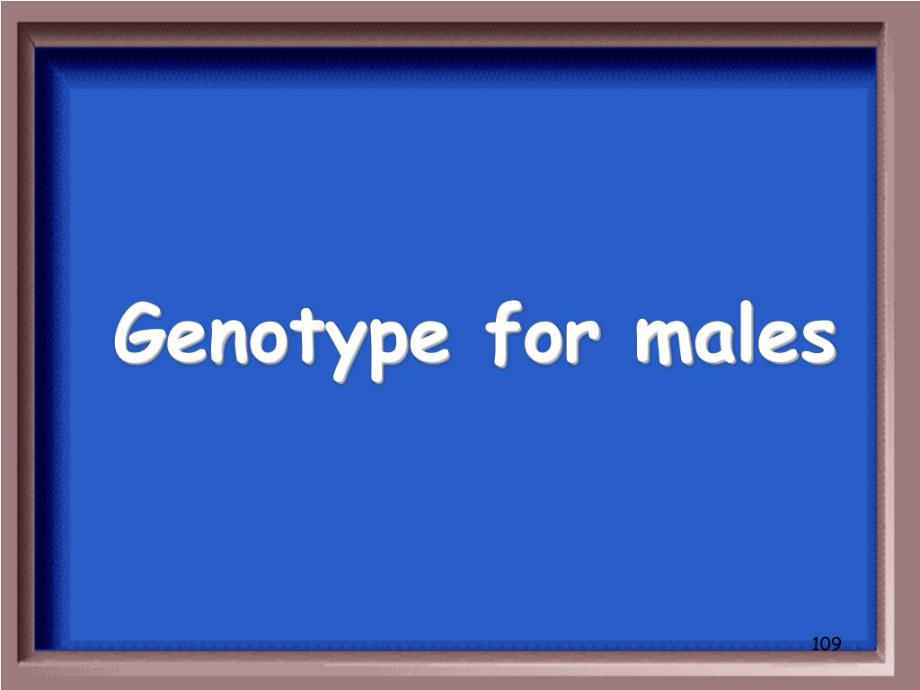 Genotype for males