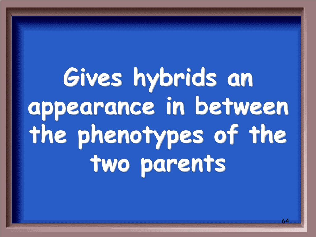 Gives hybrids an appearance in between the phenotypes of the two parents