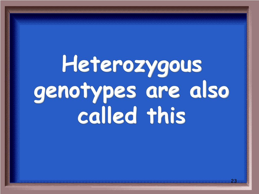 Heterozygous genotypes are also called this