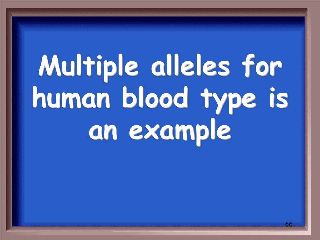 Multiple alleles for human blood type is an example