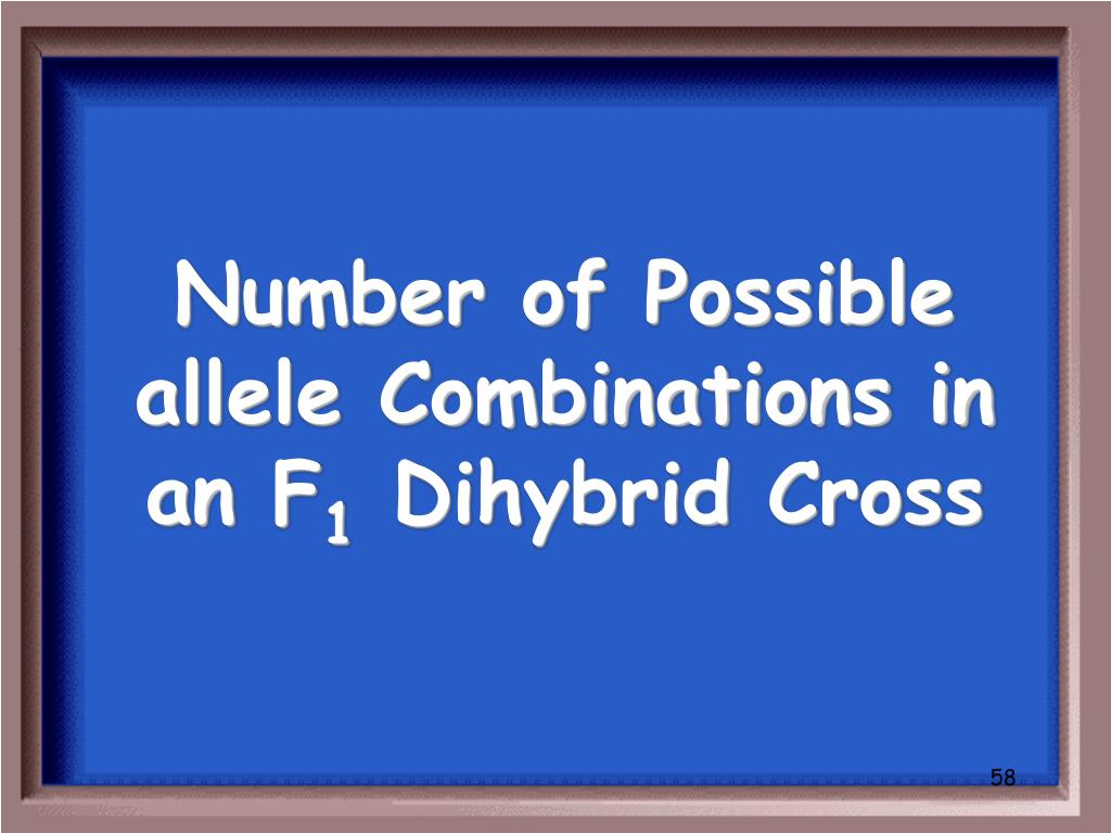 Number of Possible allele Combinations in an F