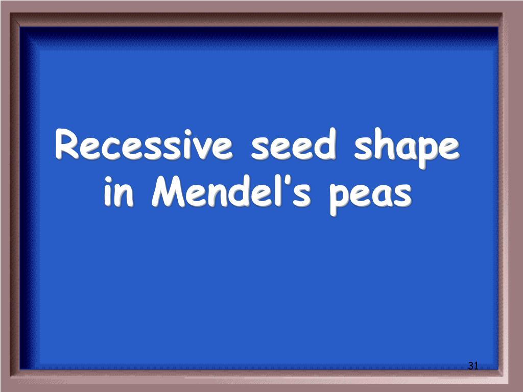 Recessive seed shape in Mendel's peas