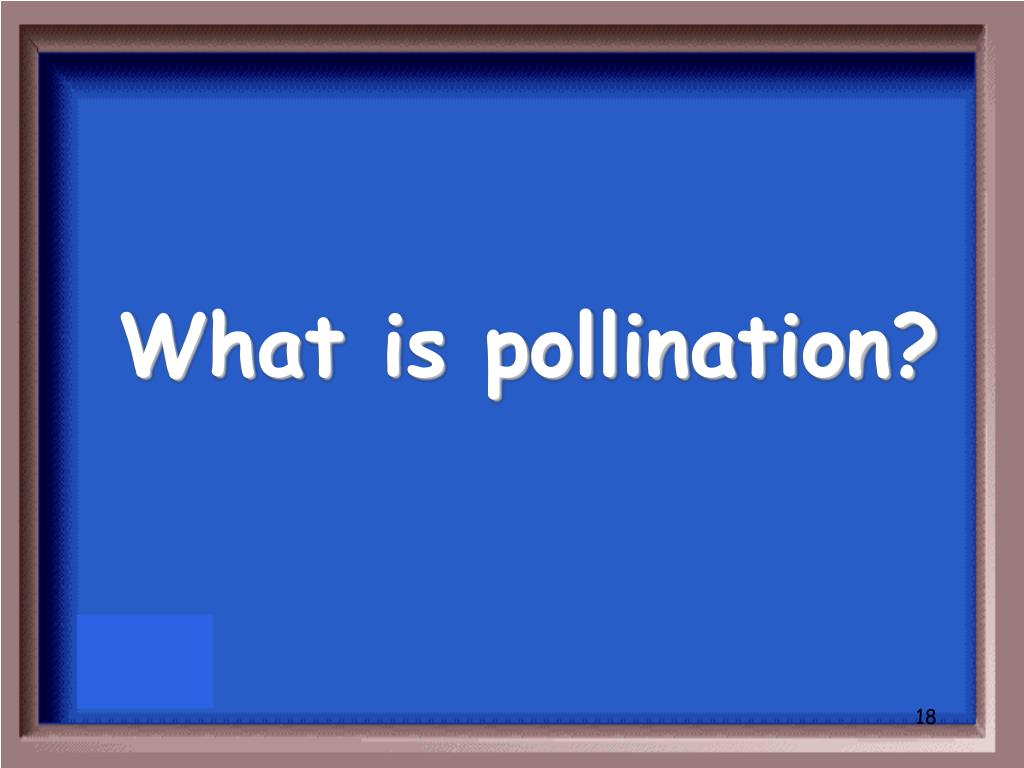 What is pollination?