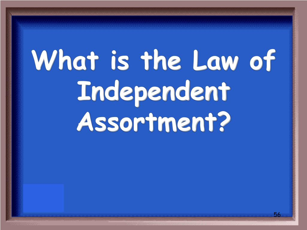 What is the Law of Independent Assortment?