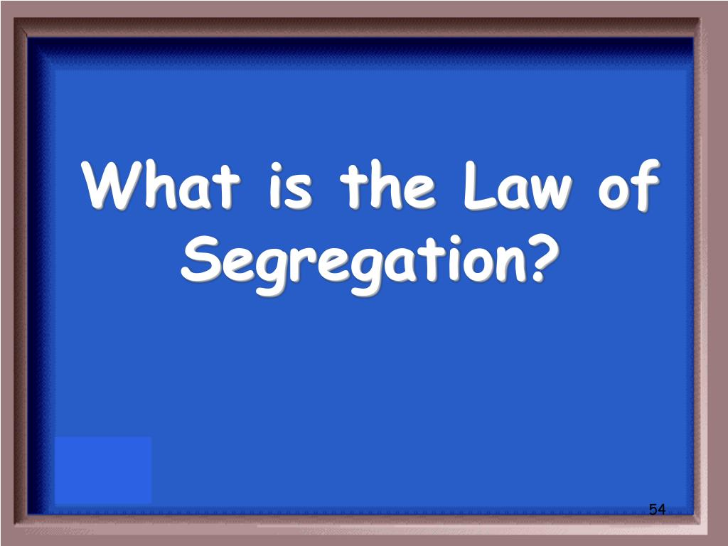 What is the Law of Segregation?