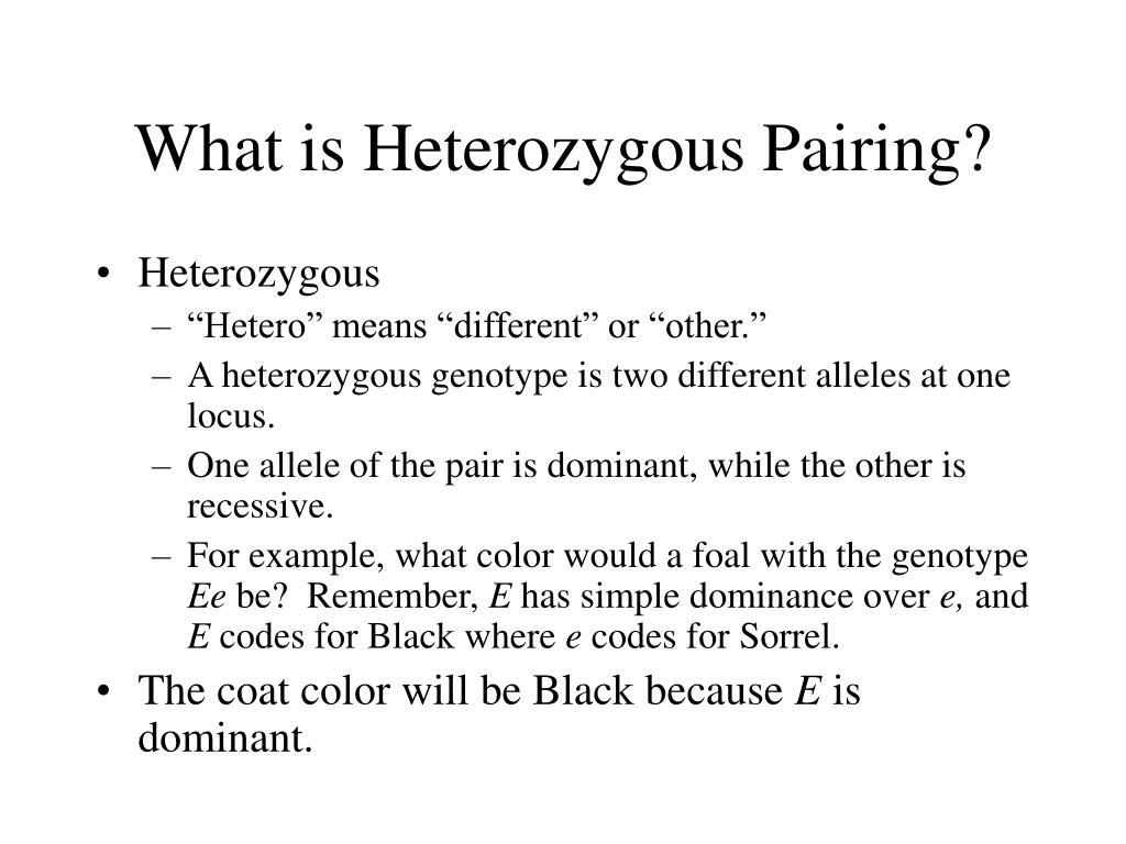 What is Heterozygous Pairing?