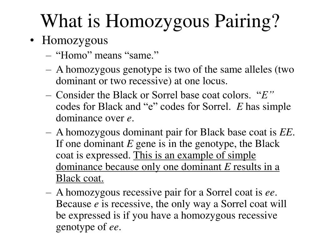 What is Homozygous Pairing?