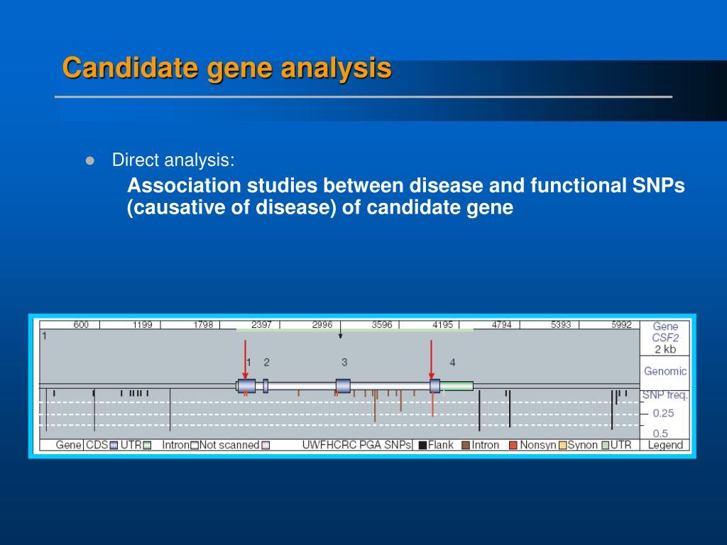 Candidate gene analysis