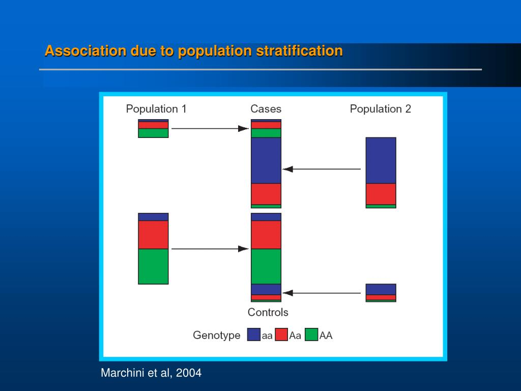 Association due to population stratification
