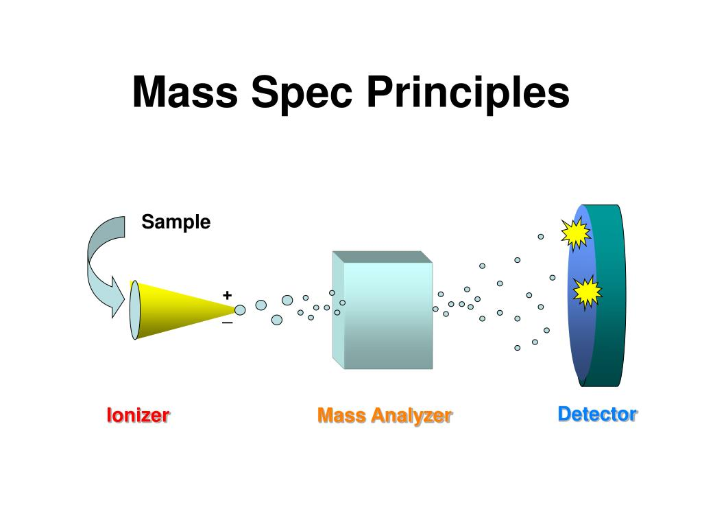 Mass Spec Principles