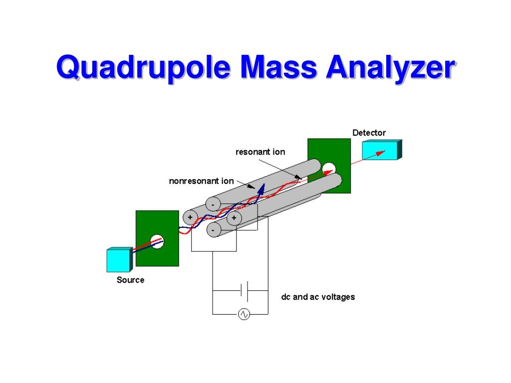 Quadrupole Mass Analyzer