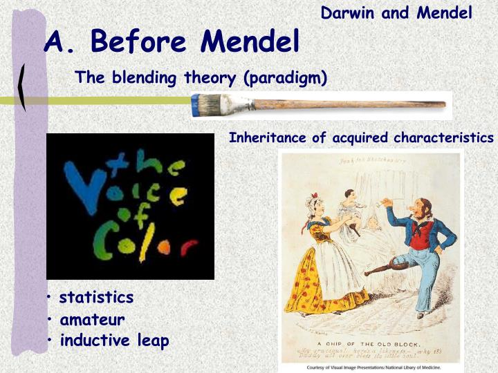 A before mendel