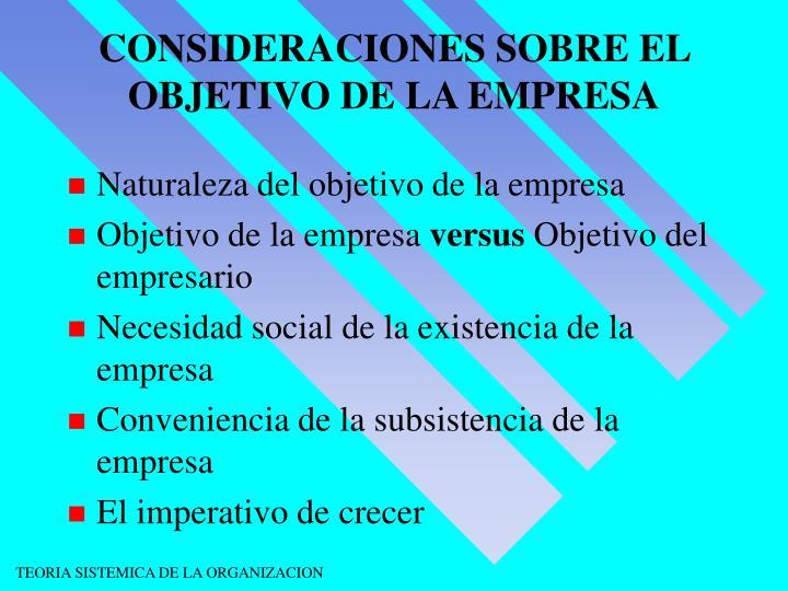 CONSIDERACIONES SOBRE EL OBJETIVO DE LA EMPRESA