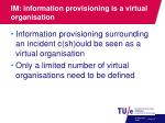 im information provisioning is a virtual organisation