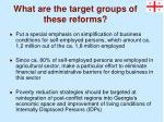 what are the target groups of these reforms