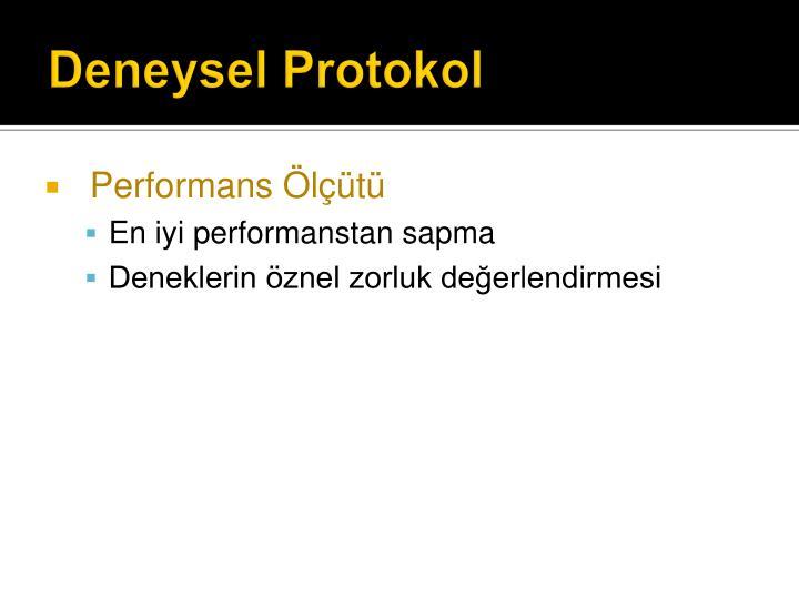 Deneysel Protokol