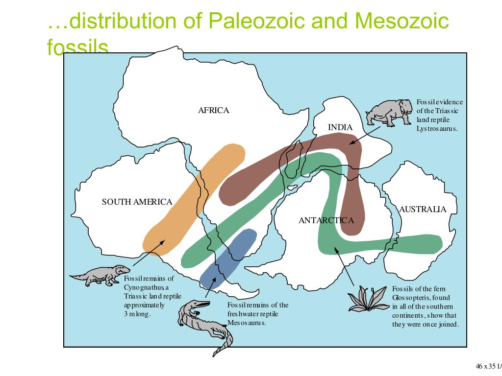 …distribution of Paleozoic and Mesozoic fossils