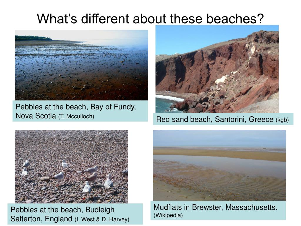 What's different about these beaches?