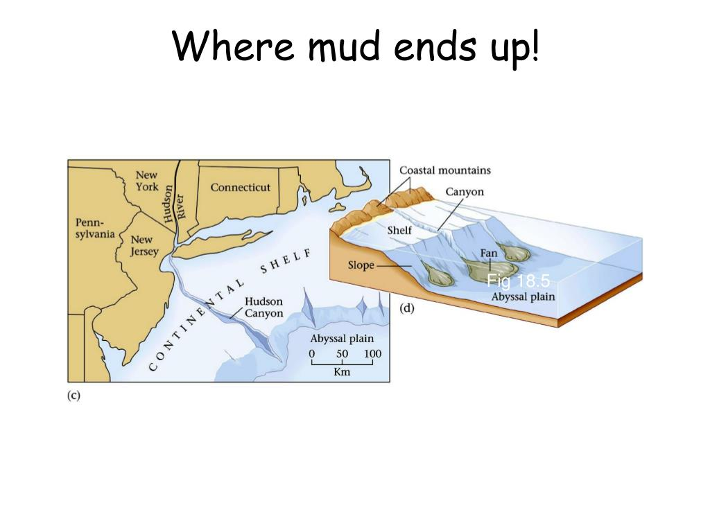 Where mud ends up!