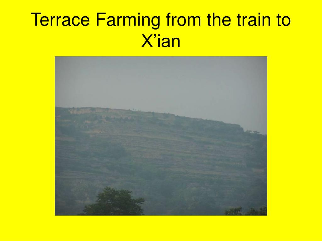 Terrace Farming from the train to X'ian