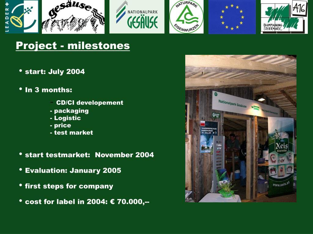 Project - milestones