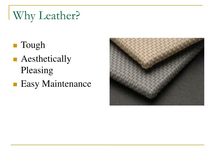 Why leather l.jpg