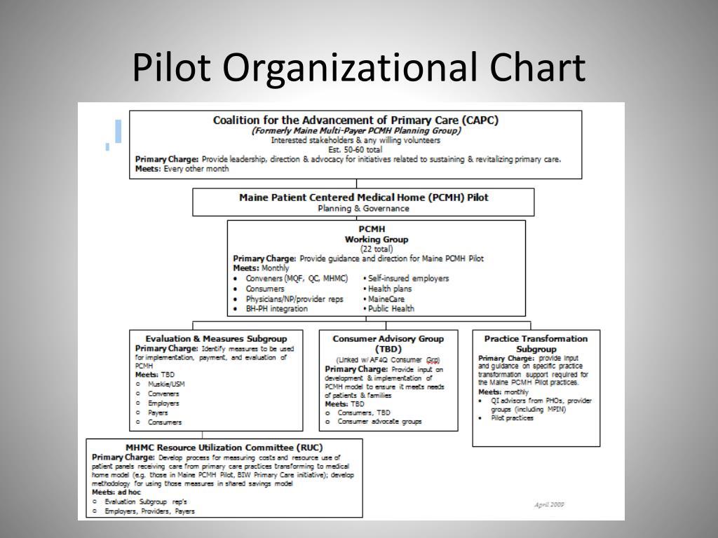 Pilot Organizational Chart