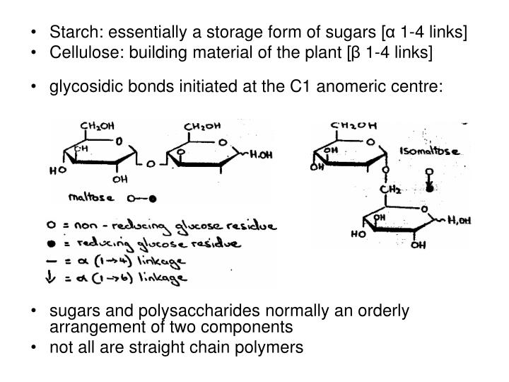 Starch: essentially a storage form of sugars [