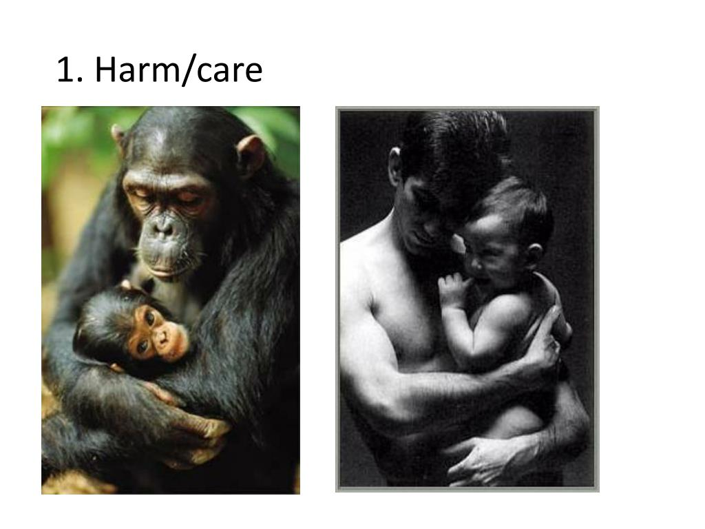 1. Harm/care
