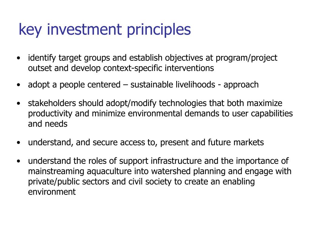 key investment principles