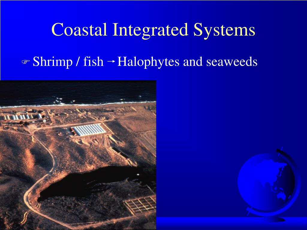 Coastal Integrated Systems