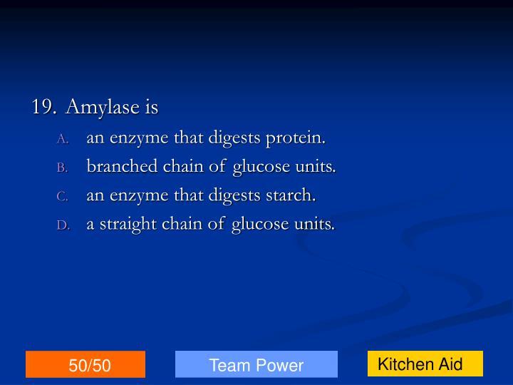 19.Amylase is