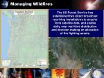 managing wildfires