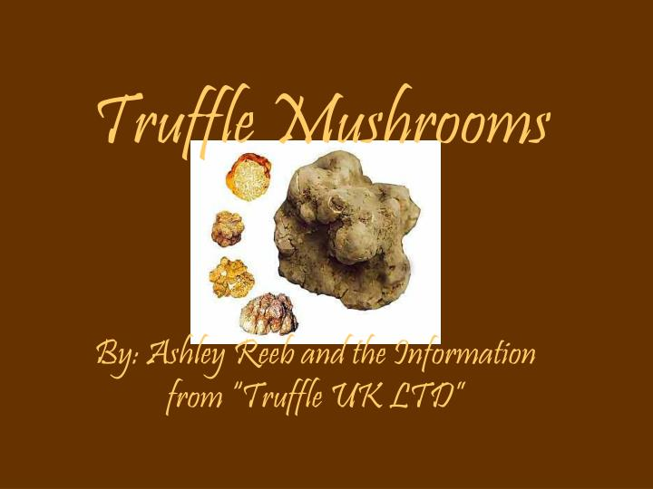 Truffle mushrooms