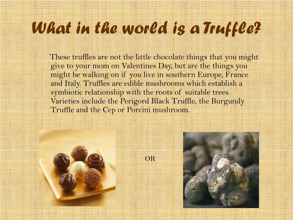 What in the world is a Truffle?