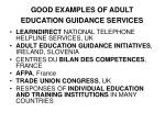 good examples of adult education guidance services
