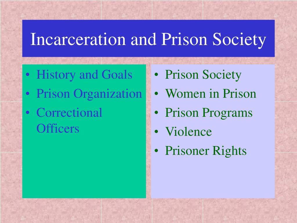 incarceration and prison society