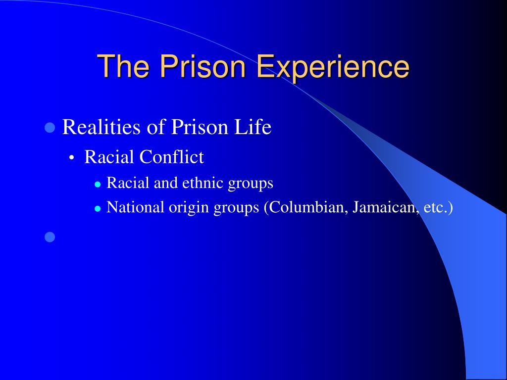 The Prison Experience