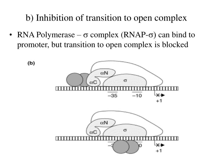 b) Inhibition of transition to open complex