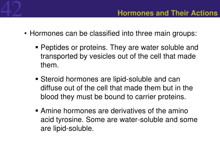 can steroid secreting cells store hormones