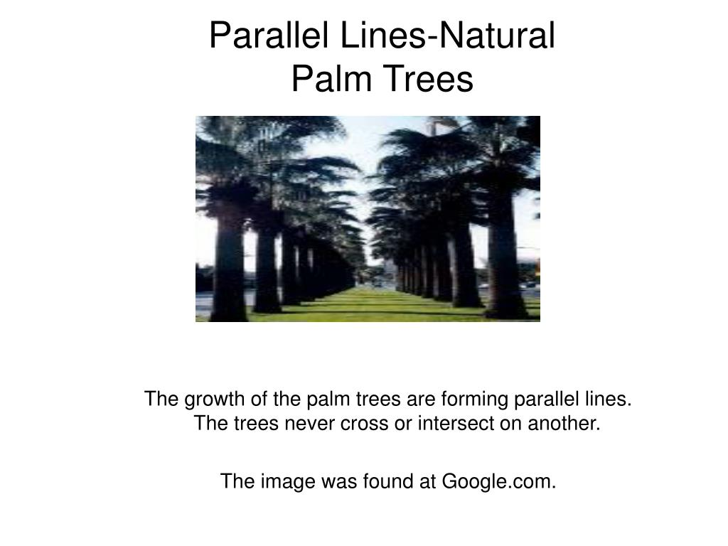 Parallel Lines-Natural