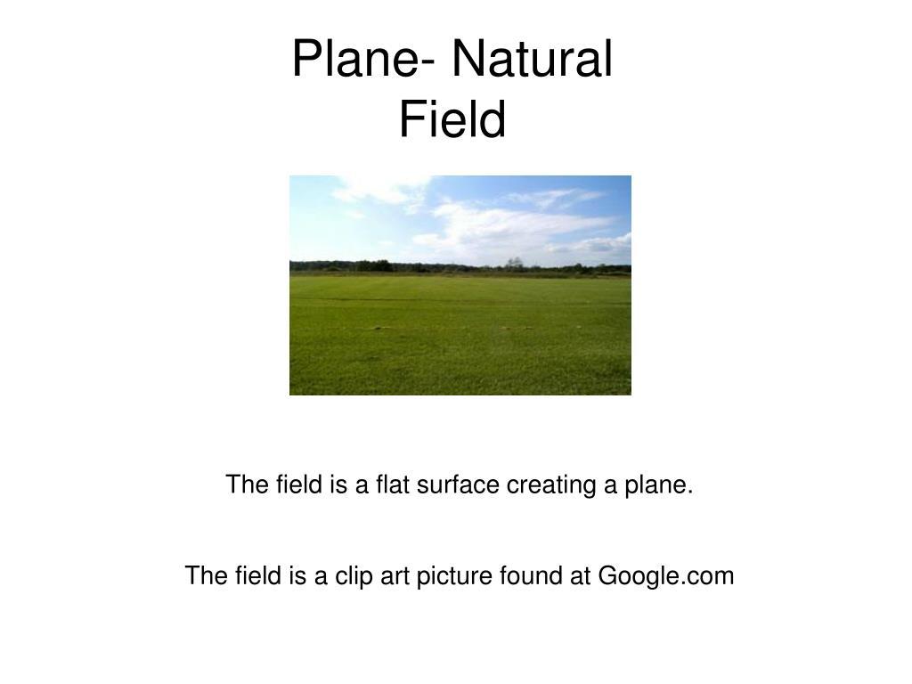Plane- Natural