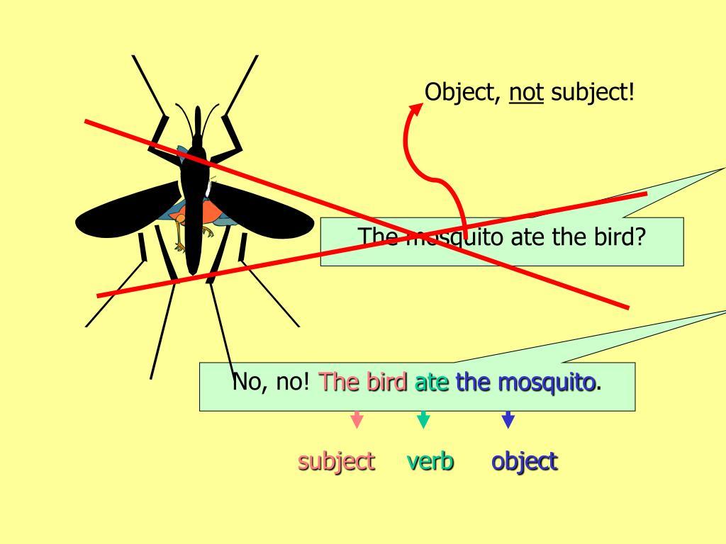 Object,