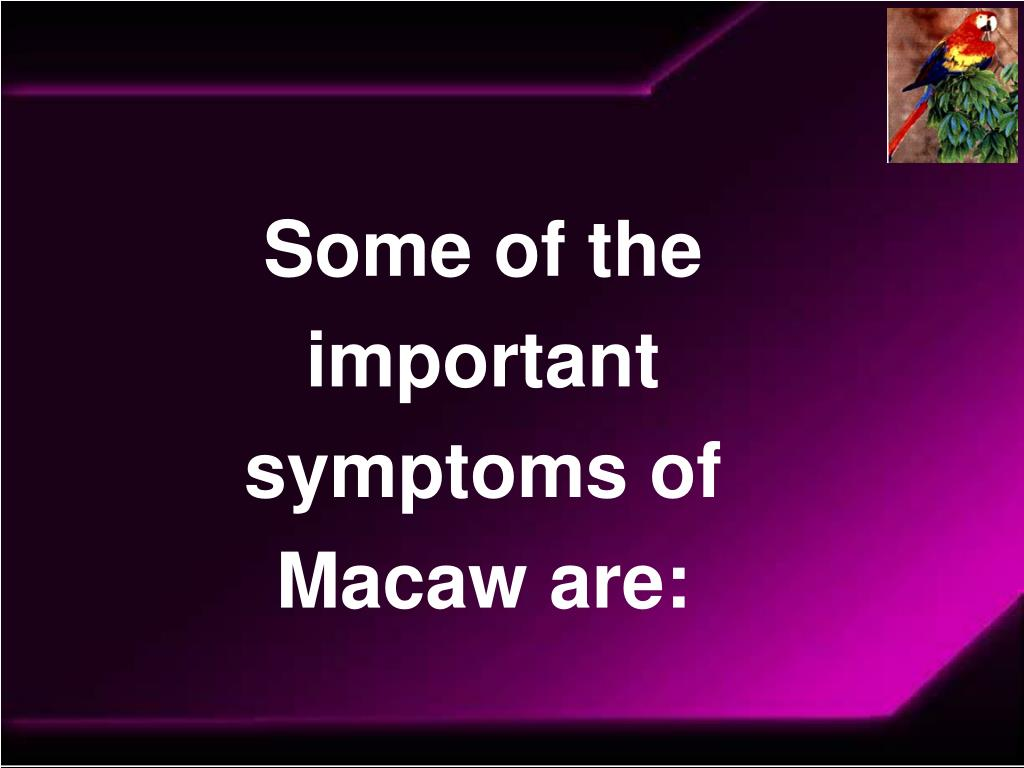 Some of the important symptoms of Macaw are: