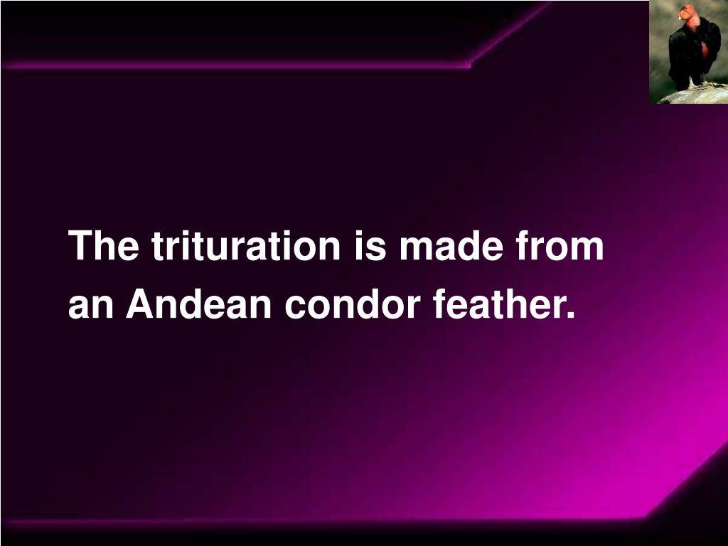 The trituration is made from an Andean condor feather.